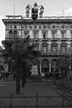 Piazza Duomo Palme 3