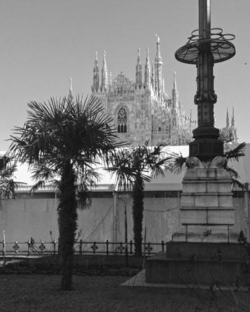 Piazza Duomo Palme 5