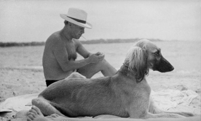 Pablo Picasso, 1936Photographie de Man Ray