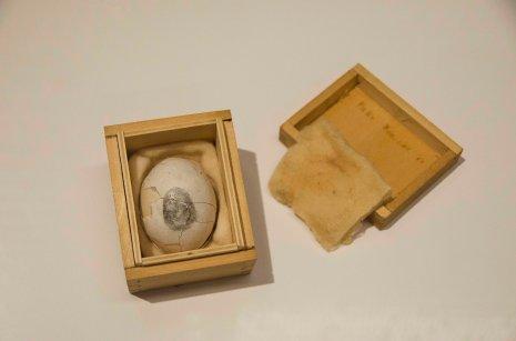 Museo Novecento 4 mostre - Solo Piero Manzoni 2