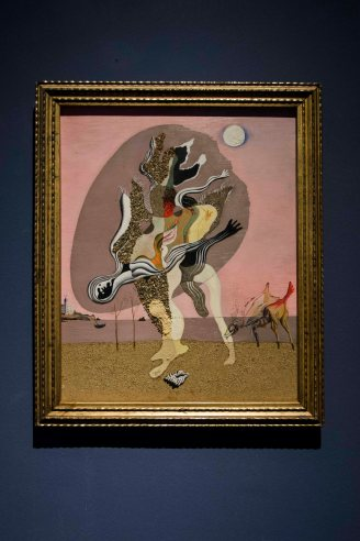 Palazzo Blu Pisa - Da Magritte a Duchamp 6